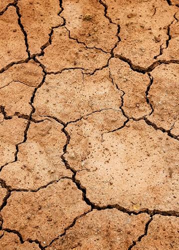 expertise fissures sécheresse